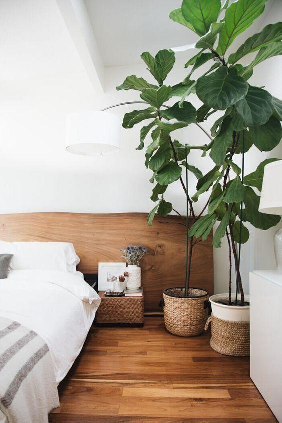 Какие цветы должны стоять в спальне?
