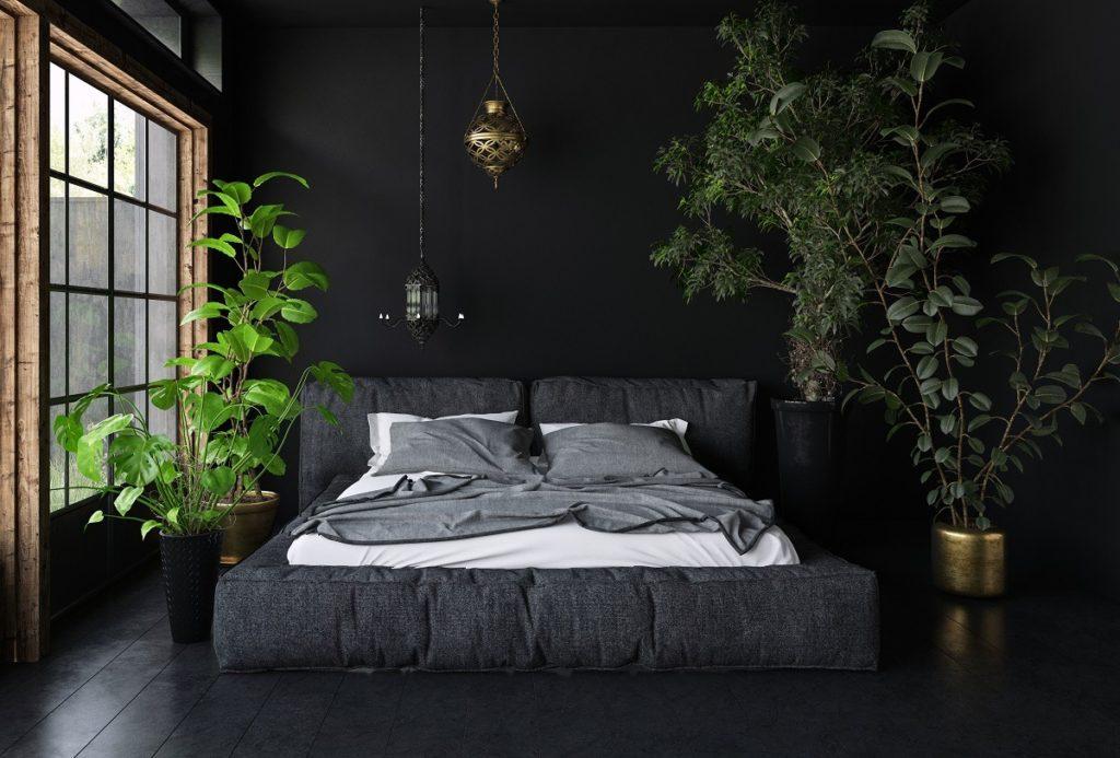 Можно ли поставить фикус в спальне?